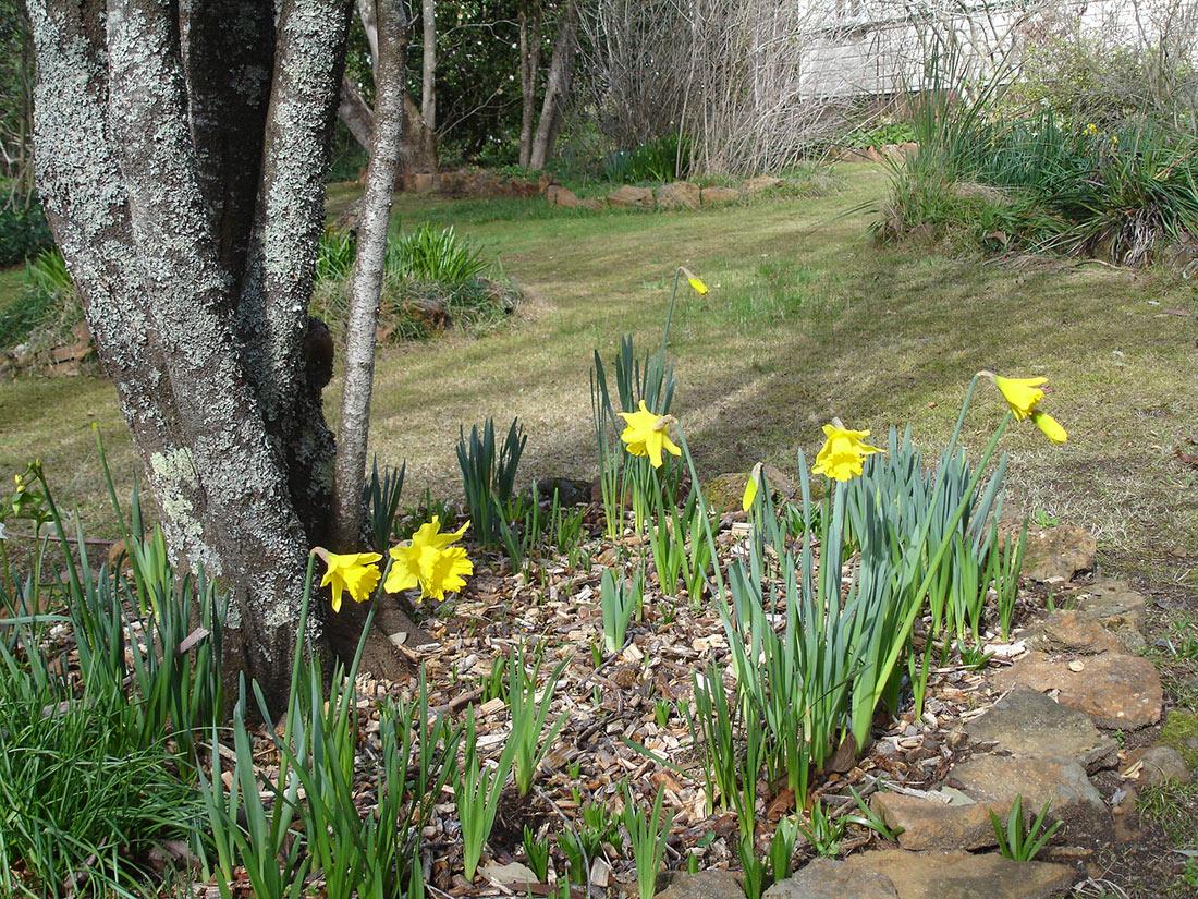 Accommodation Blackheath Spring