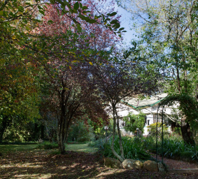 Blackheath Accommodation Gardens