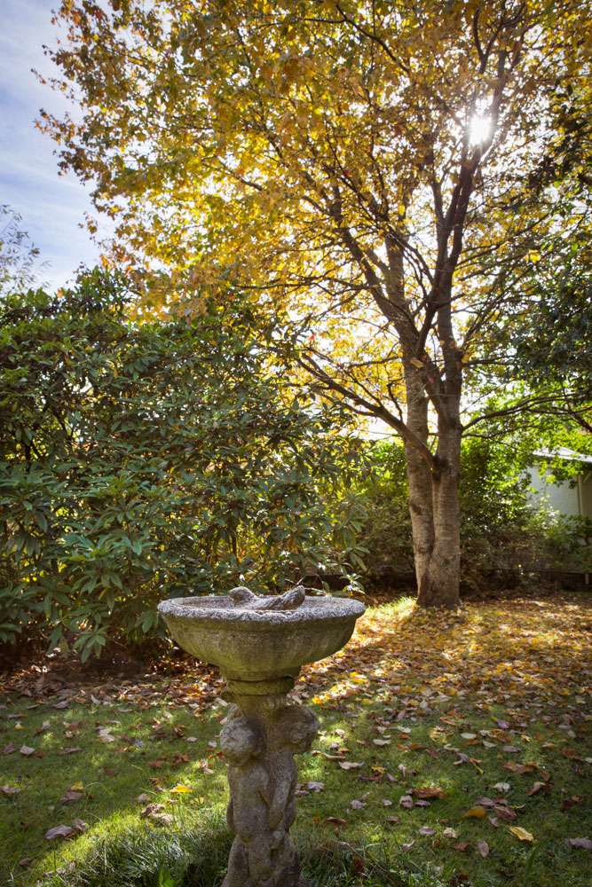 Blackheath Accommodation Gardens